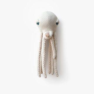 Octopus albino